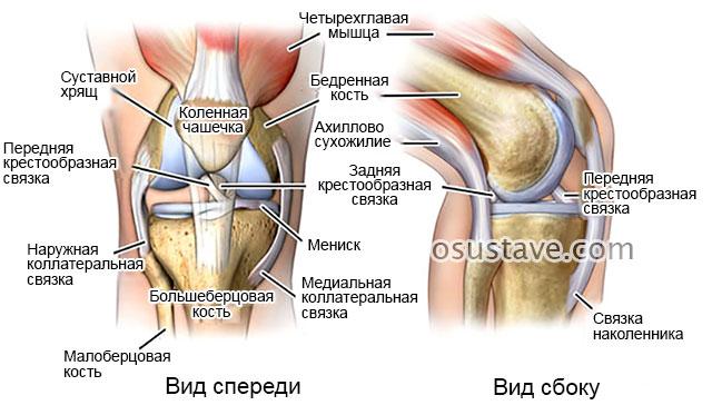 Если болят колени что делать и хрустят