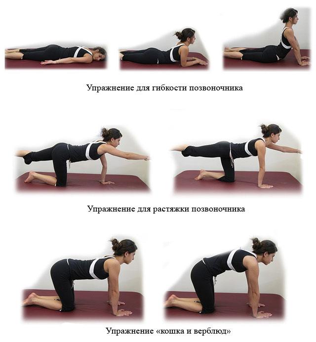 упражнения для пояснично-крестцового отдела позвоночника