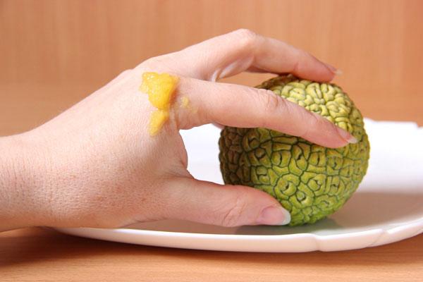 рука с нанесенным соком маклюры, плод маклюры