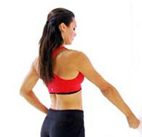 упражнение изометрическое сгибание