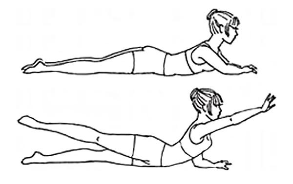 упражнение лежа на животе с подъемом конечностей