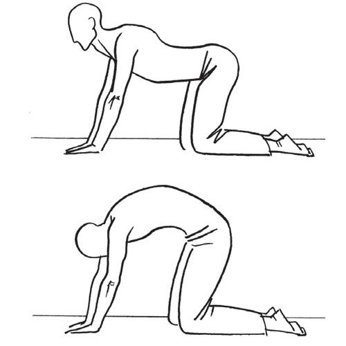 упражнение с выгибанием спины
