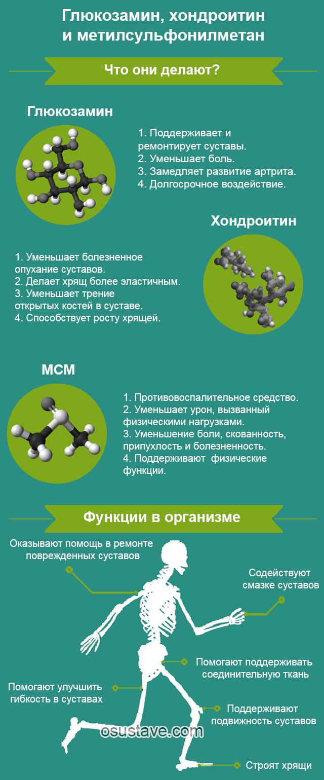 глюкозамин, хондроитин, мсм