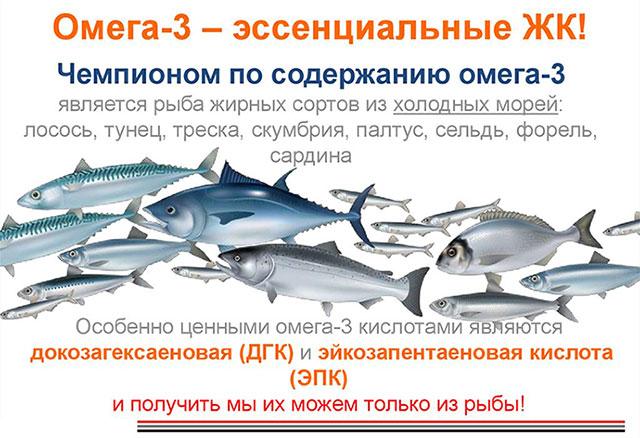 инфографика по содержанию Омега 3 в рыбе
