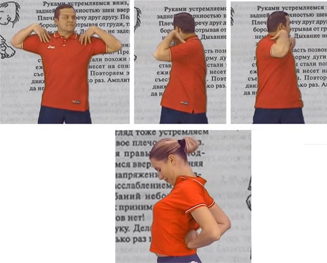 упражнения Норбекова для грудного отдела позвоночника