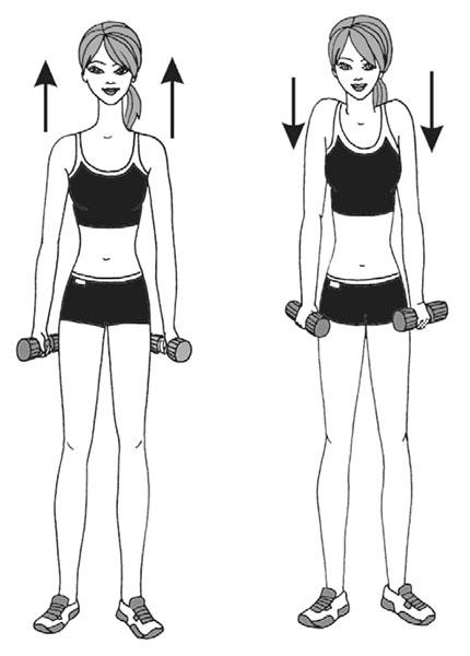 пример упражнения с гантелями