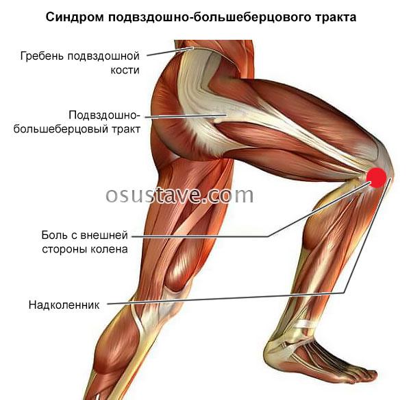 Болит колено с внешней стороны и голень thumbnail