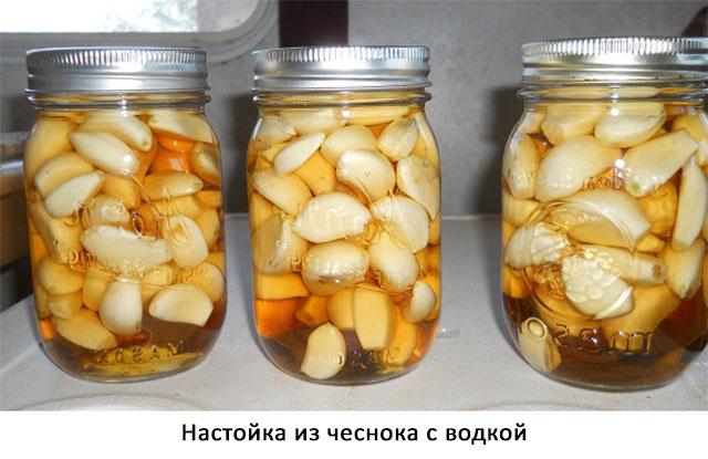 настойка из чеснока на водке