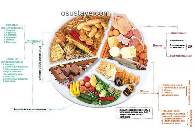 принципы здоровой диеты