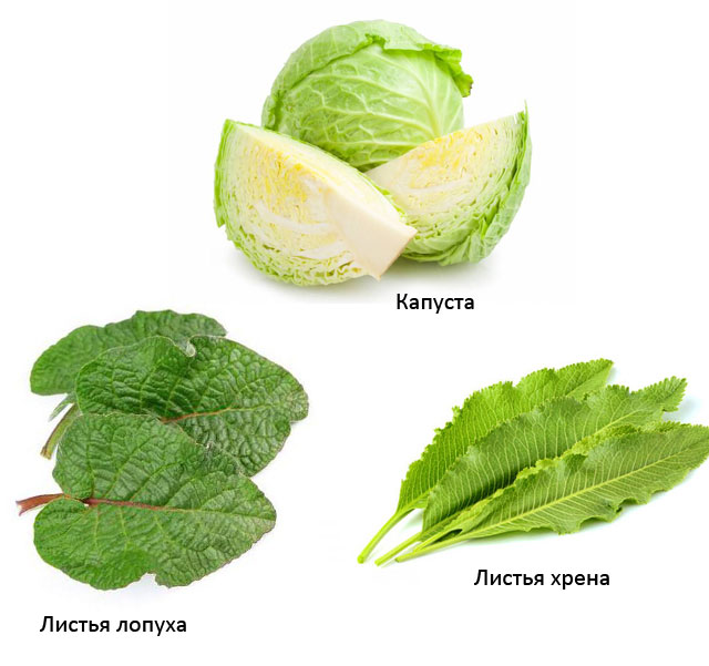 капуста, листья лопуха, листья хрена