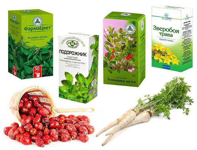 листья крапивы, листья подорожника, листья толокнянки, трава зверобоя, плоды шиповника, трава и корни петрушки
