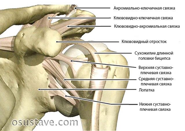 Растяжение плечевого сустава операция thumbnail