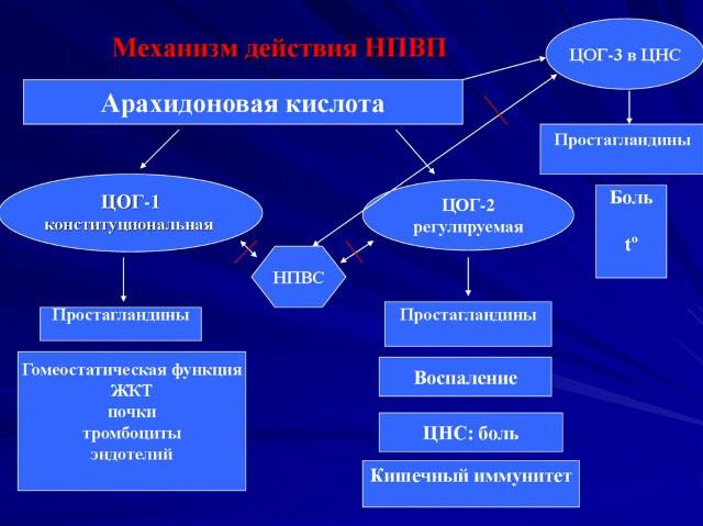 механизм действия НПВС