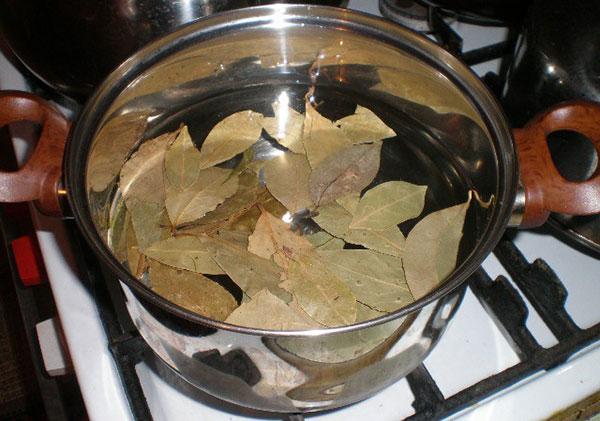 приготовление настоя лаврового листа