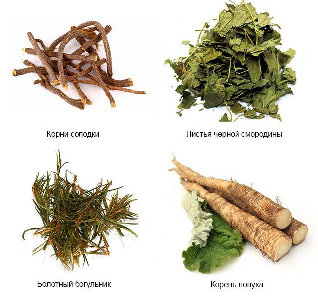травы с фитостеринами