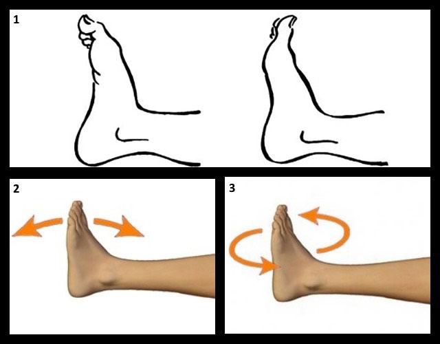 гимнастика для голеностопного сустава